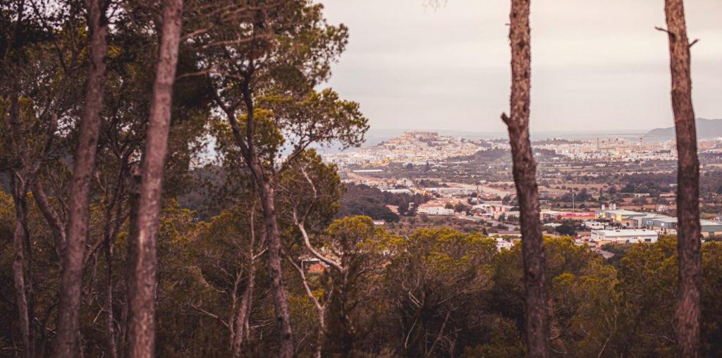 Ibiza Estates Villa PDF Santa Gertrudis 8