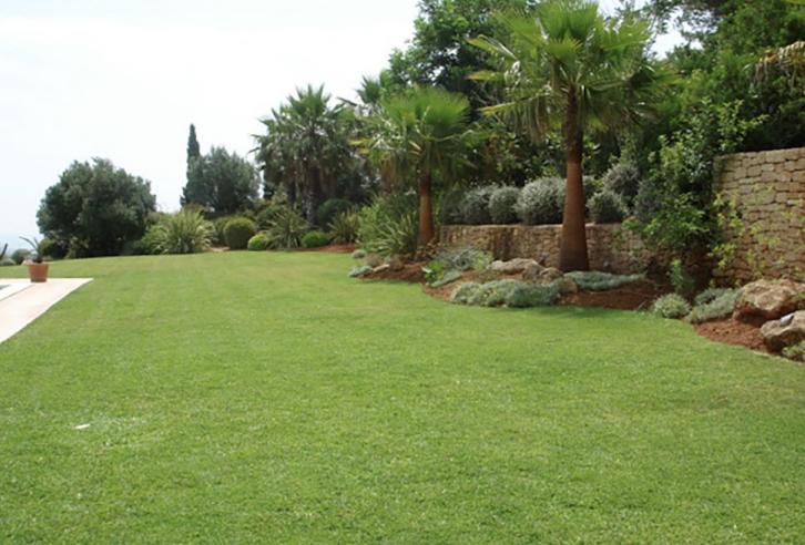 San Carlos 6