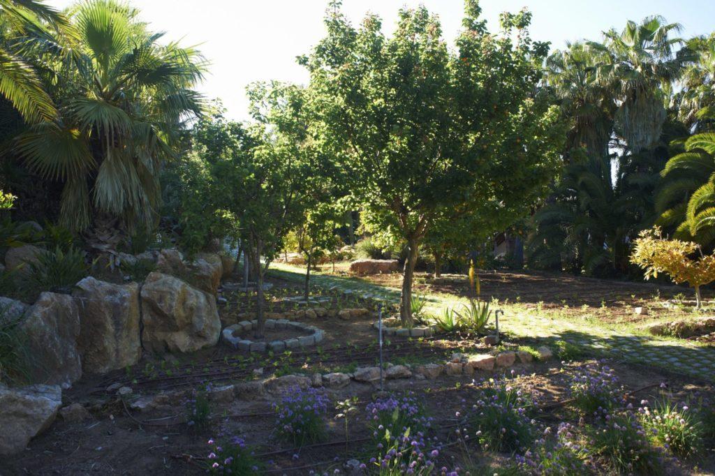 Vegetable Garden Ibiza Villa