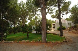 Beautiful Ibiza Villa Garden Trees Incredible Summer Luxury