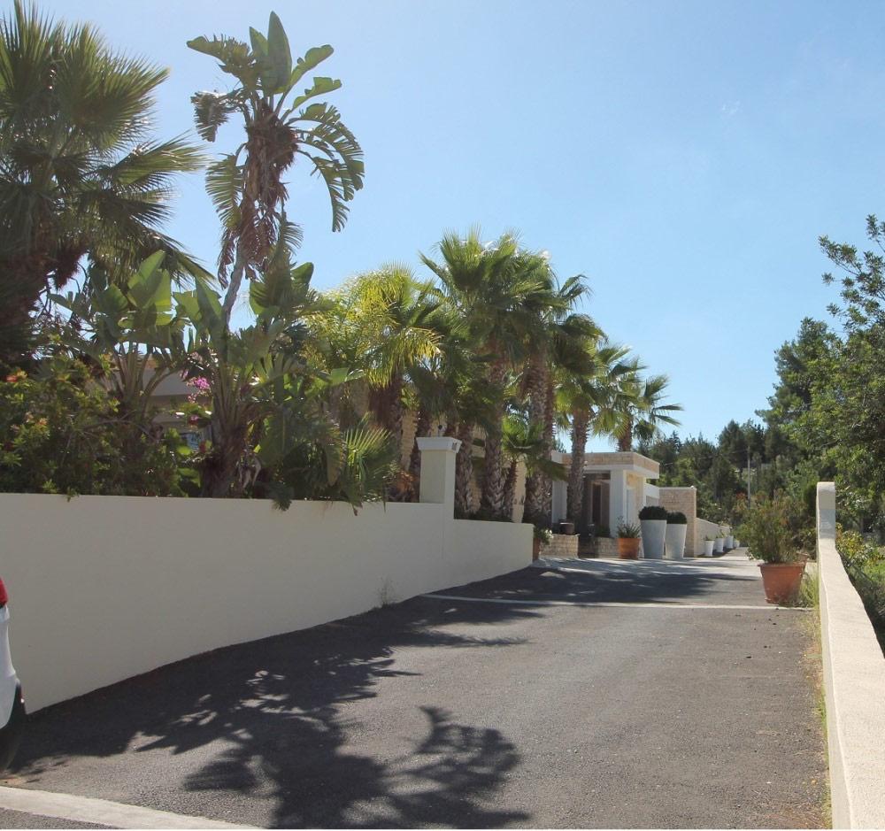 Expose 110443035 Ibiza Camino De Can Carlos 29