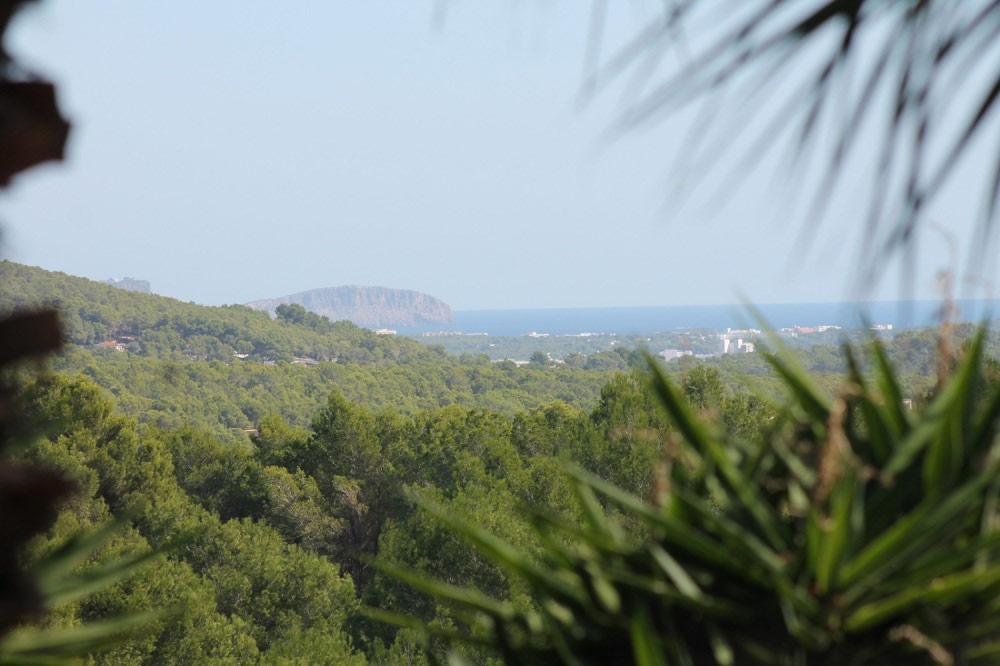 Expose 110443035 Ibiza Camino De Can Carlos 6