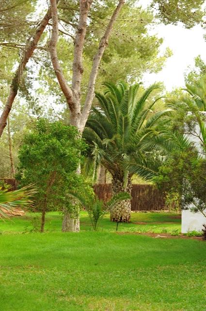 Fantastic Villa Big Garden Ibiza