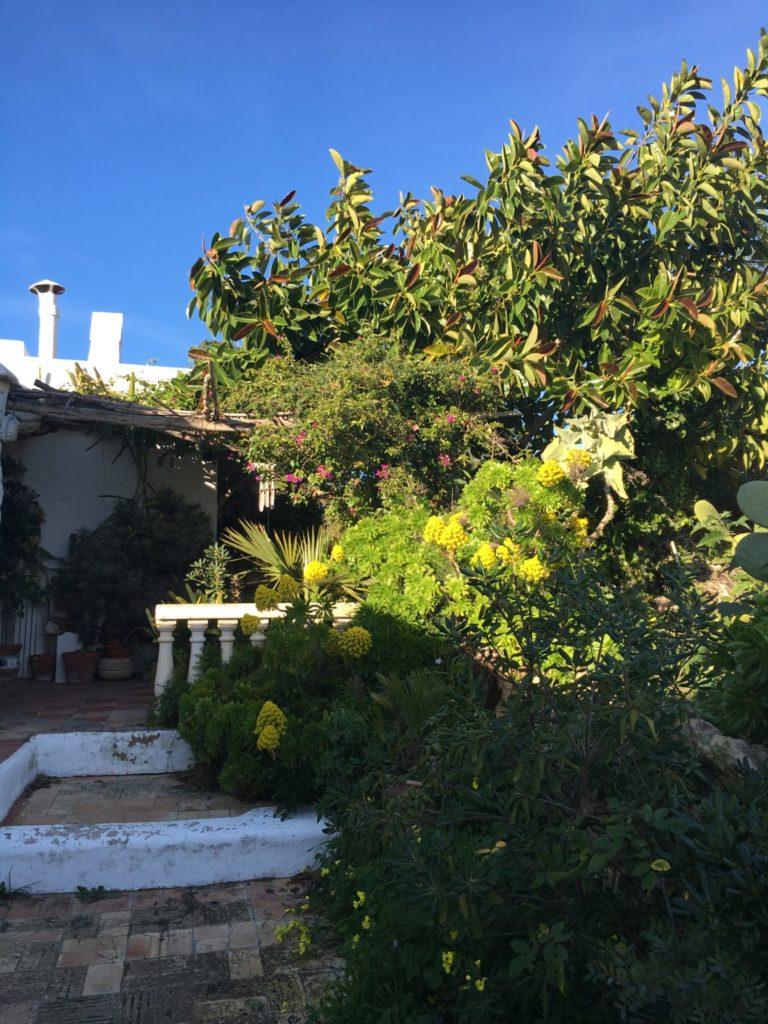 Finca Character Outdoor Front Door Terrace Ibiza Jesus Old Rustic Potential Rennovation Garden View