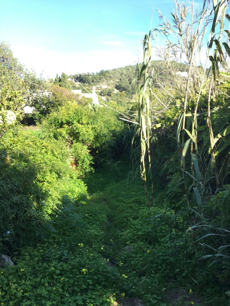 Finca Potential Rennovation Character Garden View Outdoor Front Door Terrace Ibiza Jesus Old Rustic