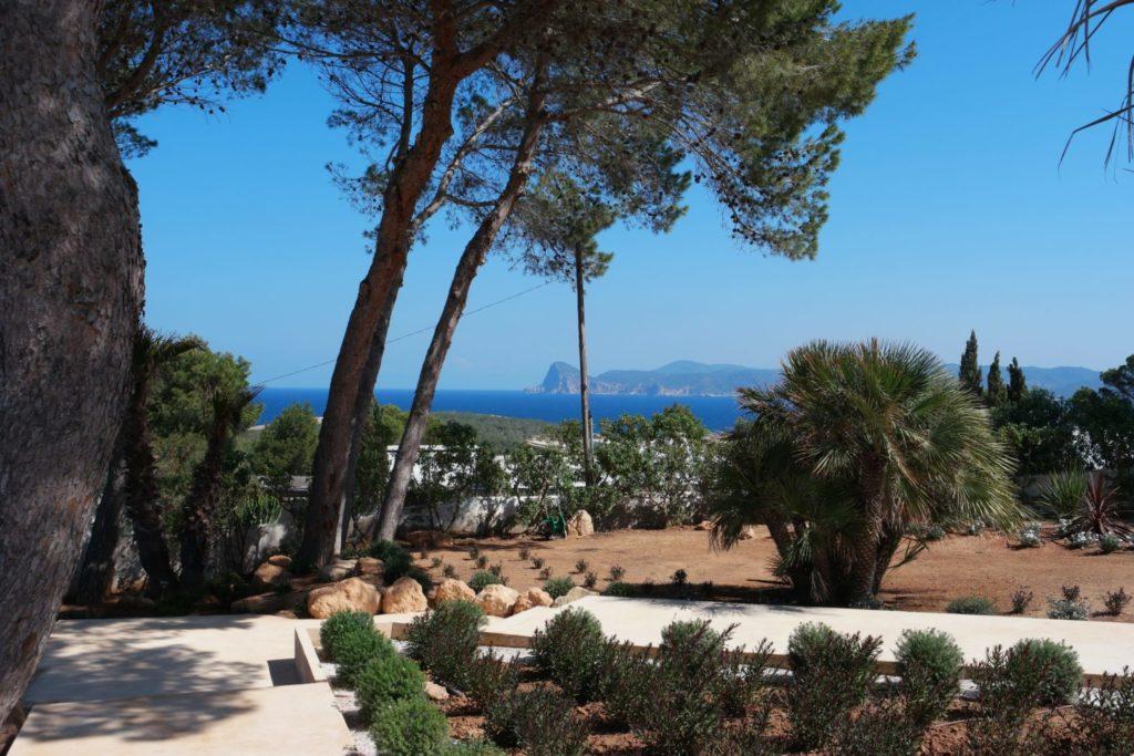 Forest Plant Pool Blue Sky Ibiza Villa