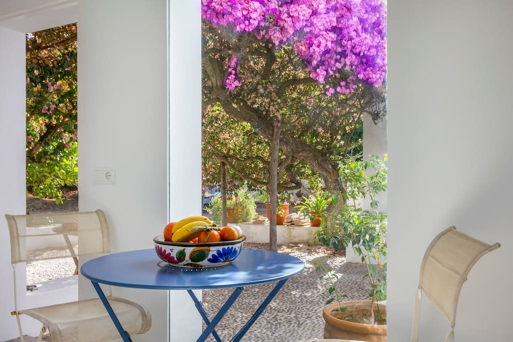 Garden Can Pepsimo Ibiza Villa Flowers Garden Table