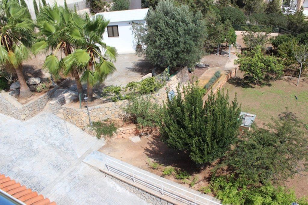 Garden Luscious Plants Villa Ibiza