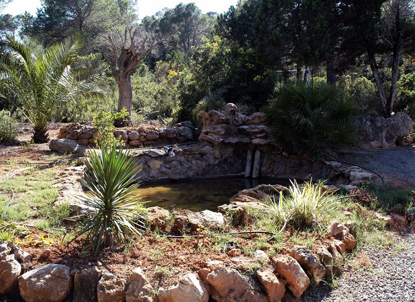 Garden Villa Ibiza