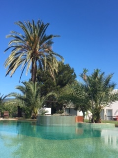 Huge Pool Cala Jondal Ibiza 1