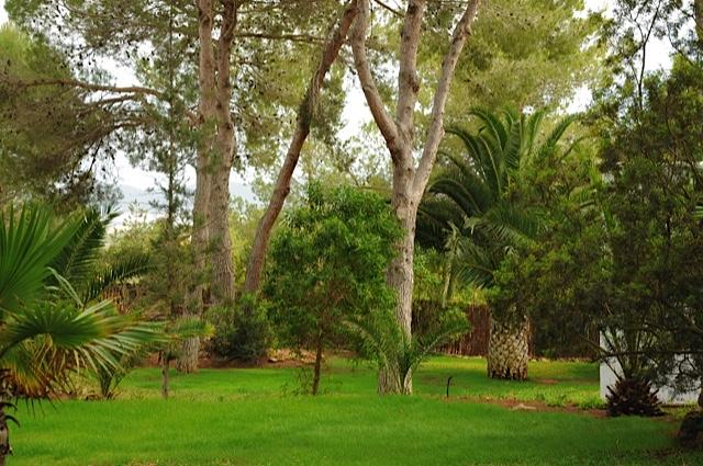 Ibiza Villa Beautiful Garden