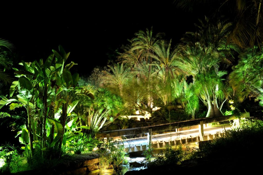 Ibiza Villa Rentals Luxury Blue Bay By Night