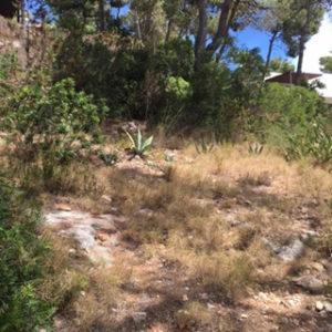 Land Ibiza Villa Forest