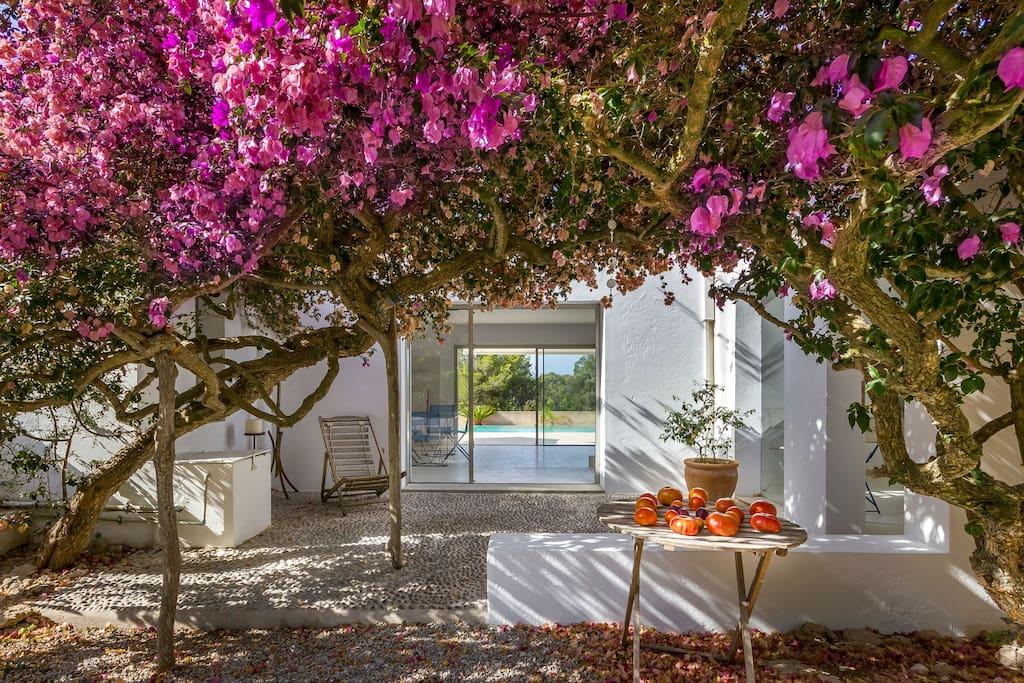 Nice Garden Casa Can Pepsimo Ibiza