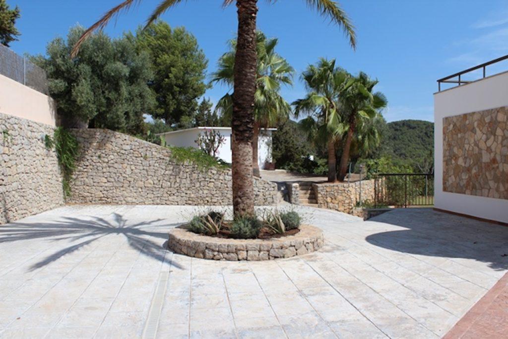 Palm Tree Parking Ibiza
