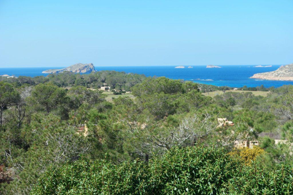 Plant Trees View Pool Ibiza Villa Sea