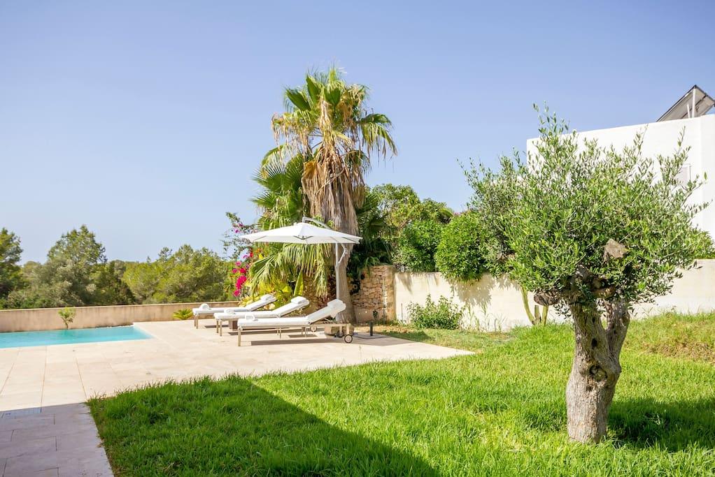 Pool Garden Casa Can Pepsimo Ibiza