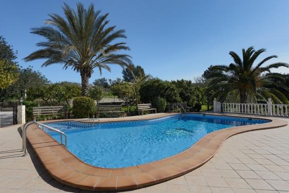Pool Ibiza Villa Palm Tree
