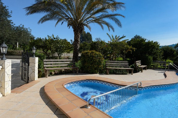 Pool Villa Tree Ibiza