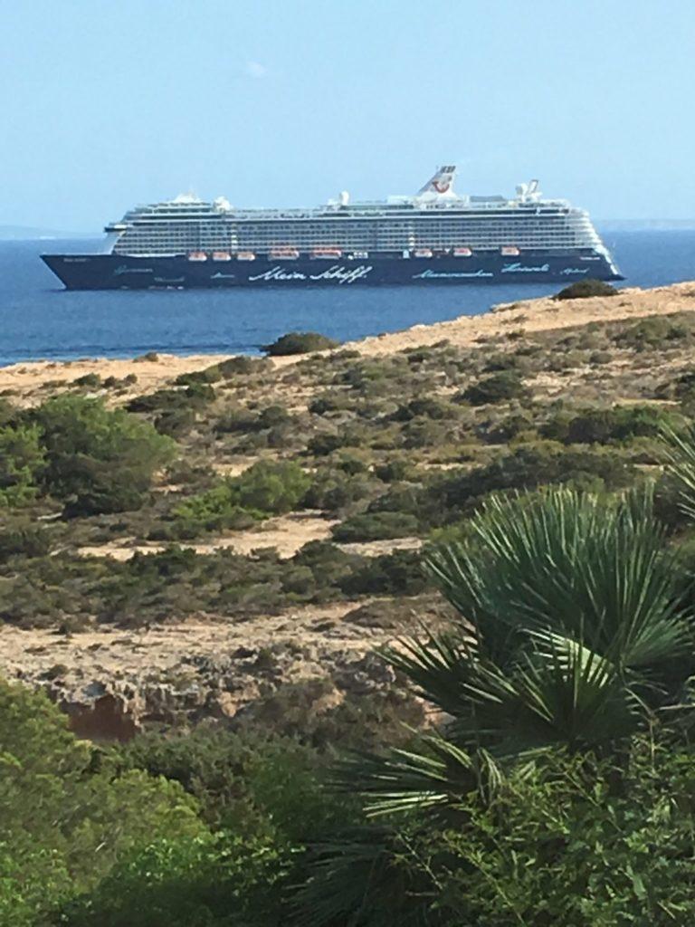 Sea Plant Ibiza Villa View Ferry Cruise Ship Budda Garden Tree