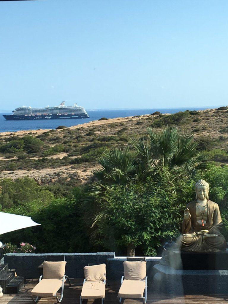 Sea Tree Plant Ibiza Villa View Ferry Cruise Ship Budda Garden