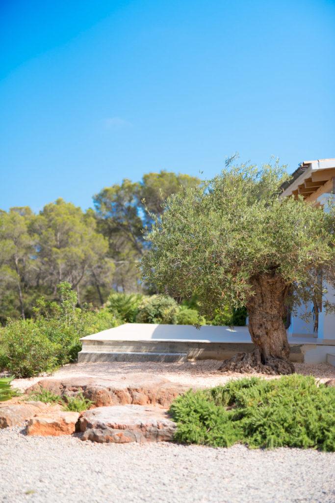 Titomu Ibiza Real Estates 2019 10