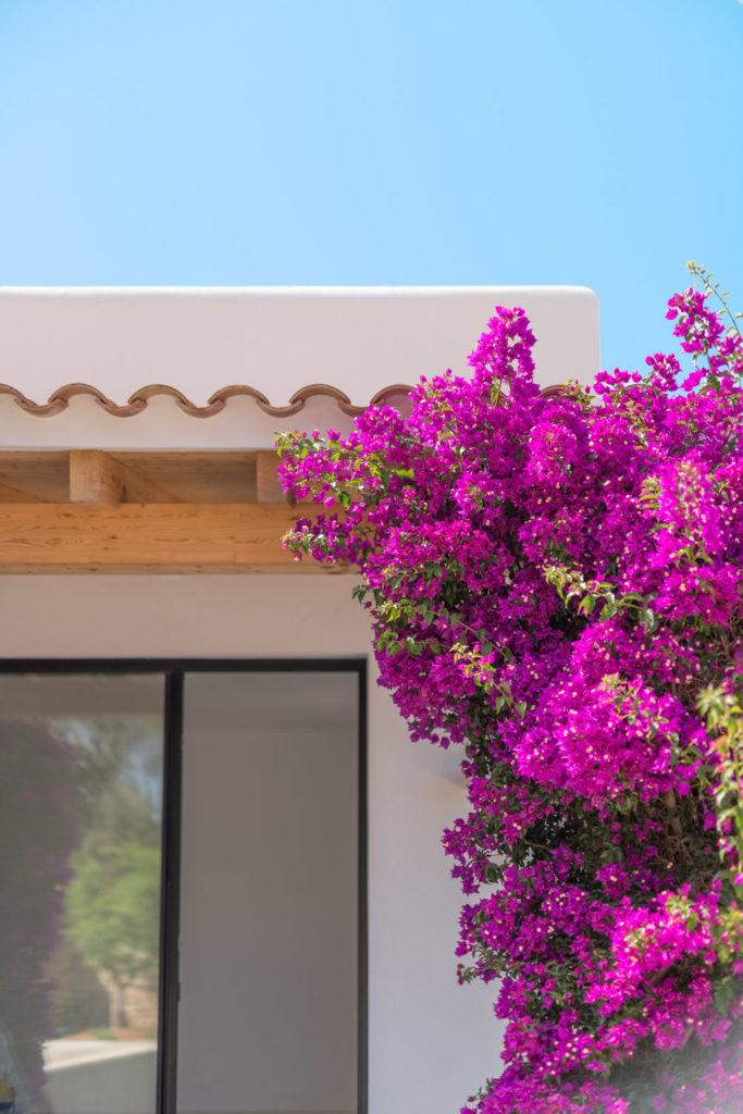 Titomu Ibiza Real Estates 2019 9