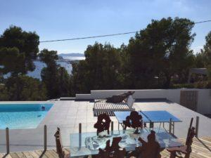 Trees Ibiza Villa Pool