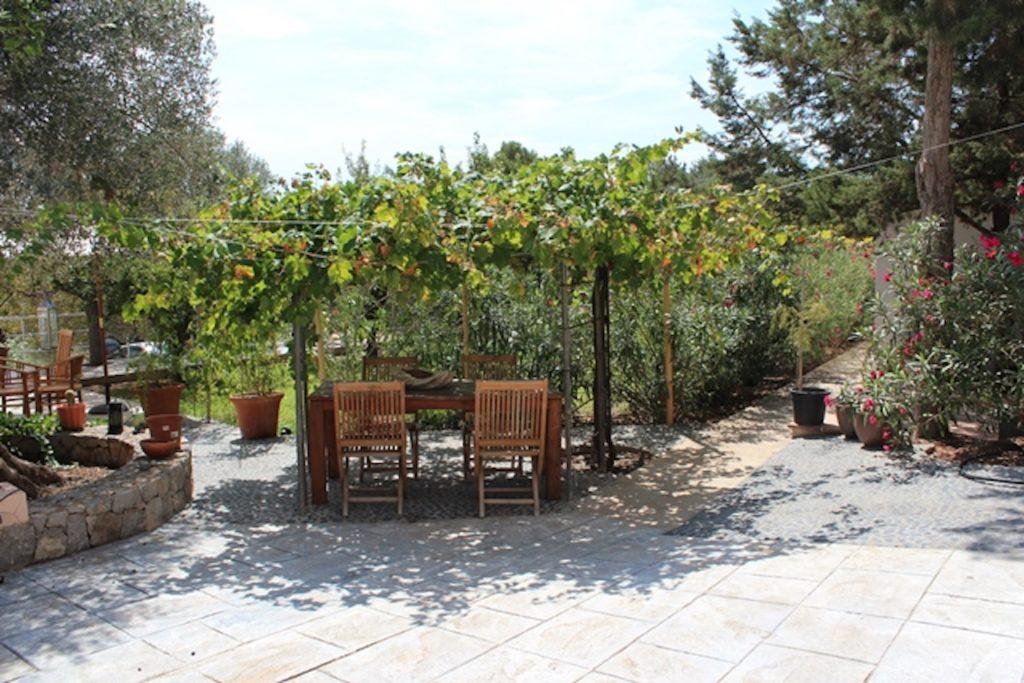 Trees Shade Exterior Villa Ibiza