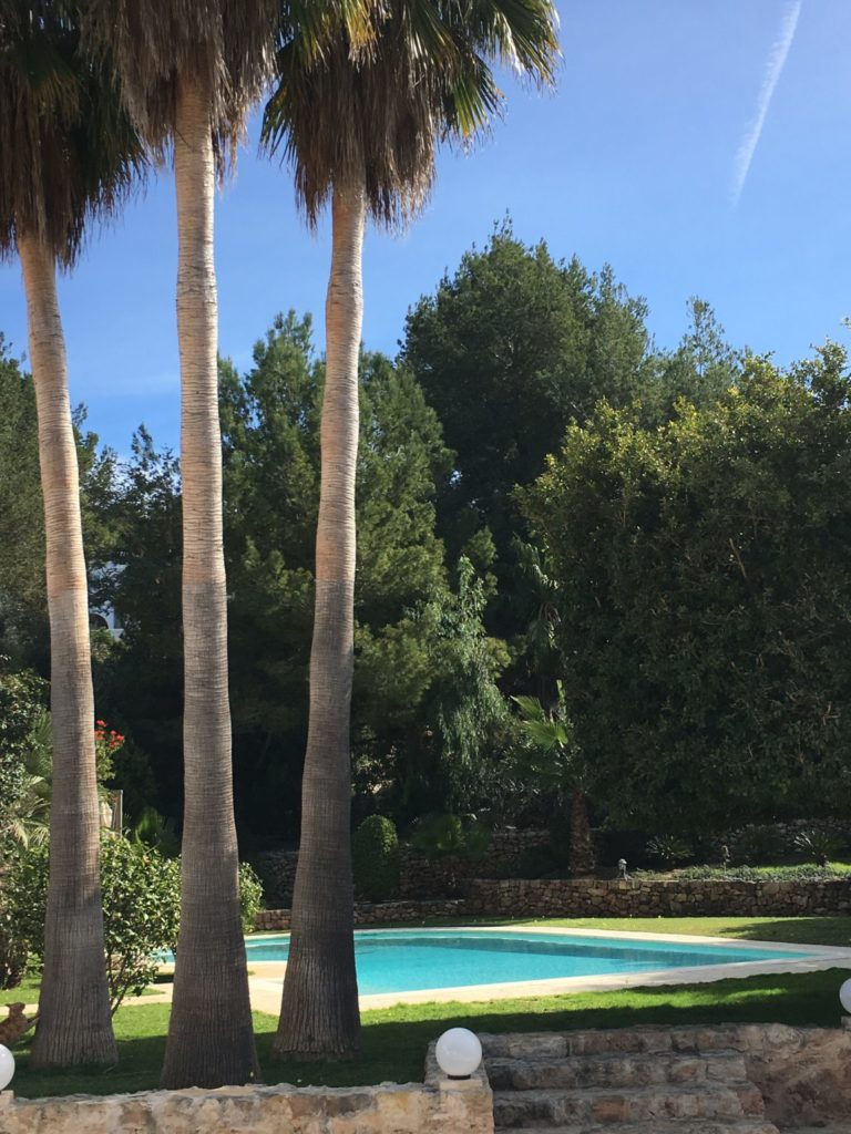 Trees Tall Pool Swimming Outside Exterior Ibiza Villa