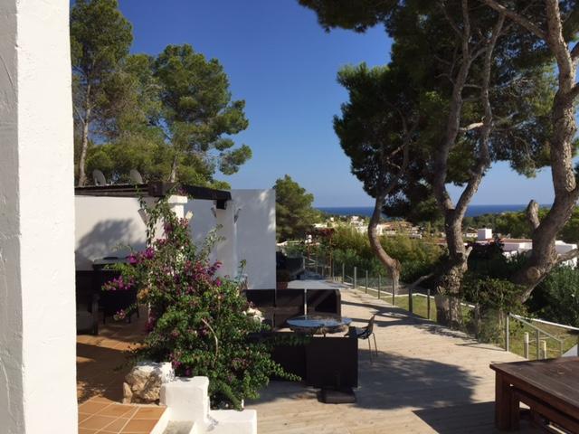 Trees Villa Forest Ibiza Hidden