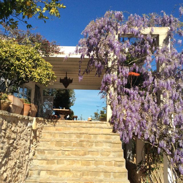 Villa Beautiful Flowers Ibiza Entrance