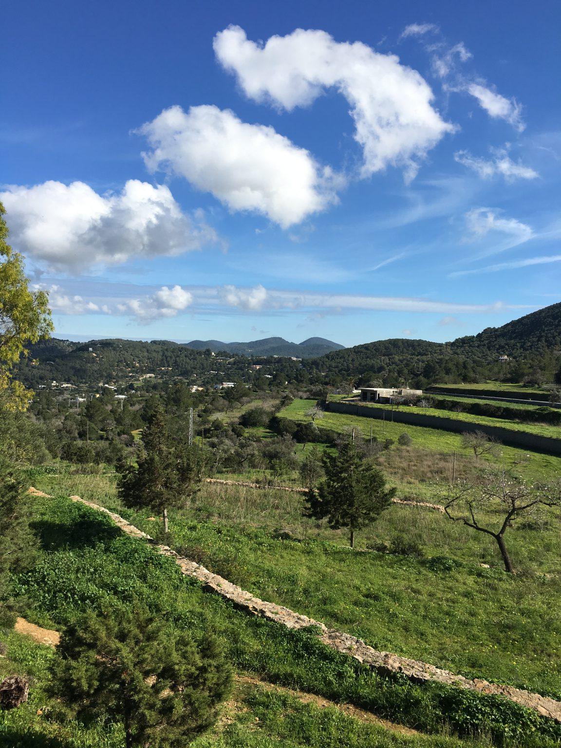 Villa Garden Green Countryside Ibiza