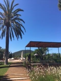 Villa With Huge Garden Cala Jondal Ibiza 1