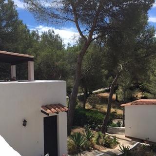 White Villa Ibiza Finca Forest