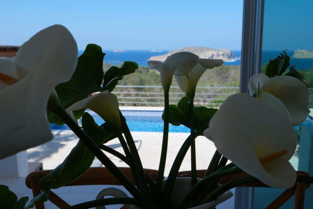 Window Flowers View Sea Villa Ibiza
