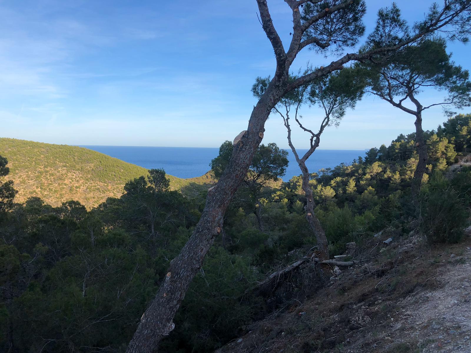 Land Roca