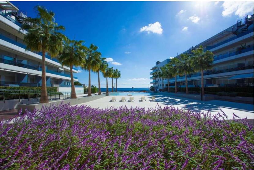 12 Penthouse Playa Den Bossa Ibiza Kingsize.com.jpg