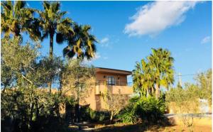2 Villa San Jose Ibiza Kingsize.com.jpg