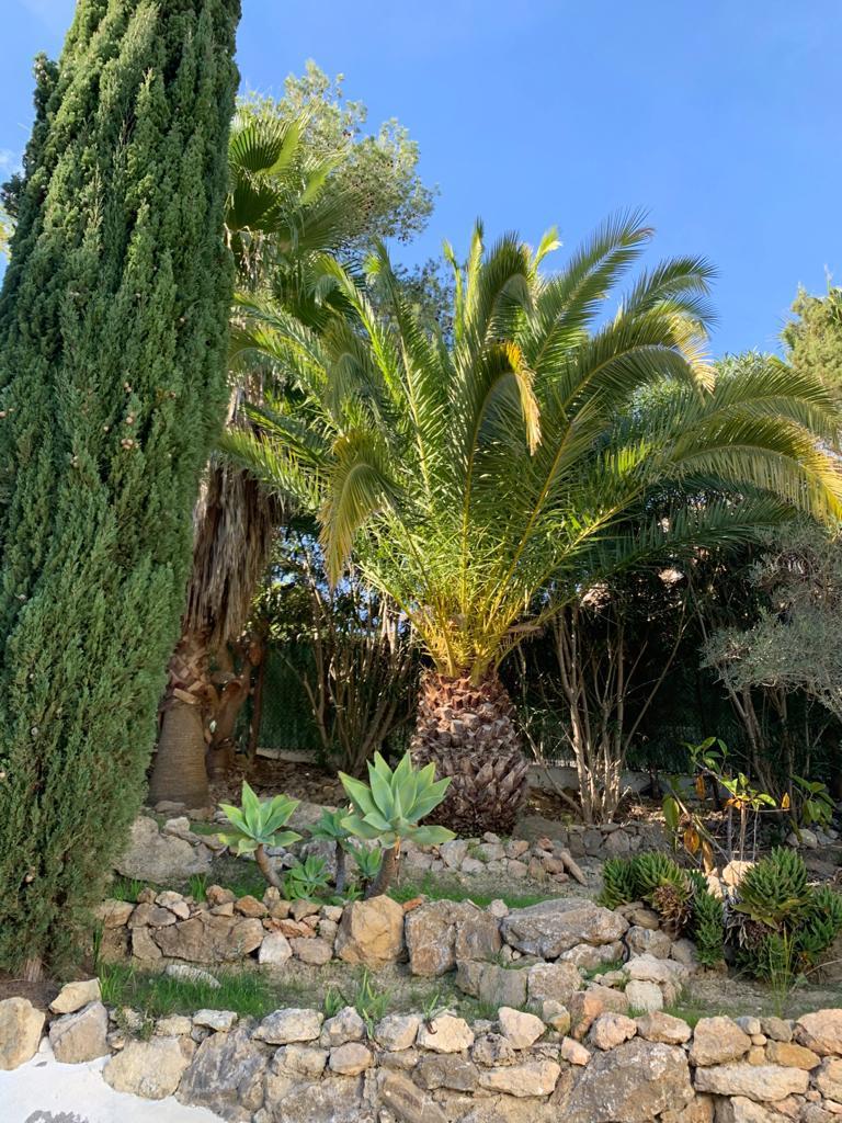 26 Villa Can Furnet Ibiza Kingsize.com.jpg