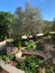 5 Villa Can Furnet Ibiza Kingsize.com.jpg